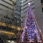 06christmas_tree_ns_bld00