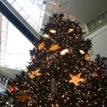 daiba_tree