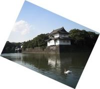 kikyouhori