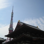 towerzoujo_ji
